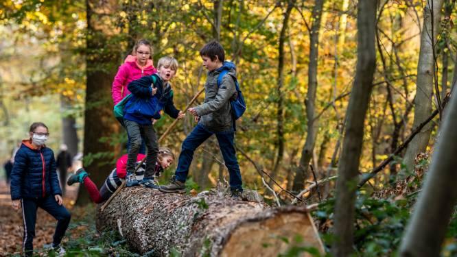 Is je kroost het wandelen beu? Ontdek onze 10 leukste tips voor de krokusvakantie in Vlaams-Brabant