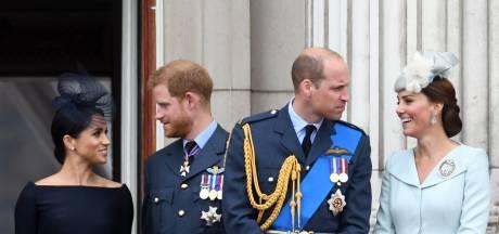 'Prins William en Harry hebben de strijdbijl eindelijk begraven'