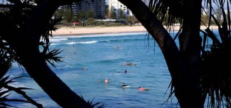 Surfer dood door aanval haai in Australië