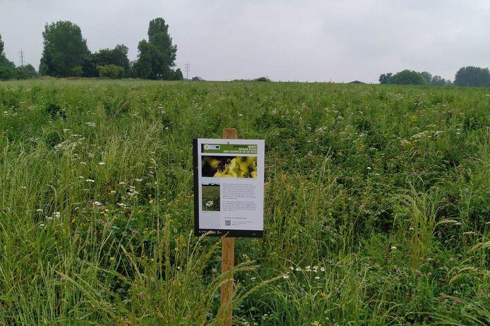 Bordjes lang de kant van de weg tonen waar landbouwers meewerken aan het Europees project 'Beespoke'.