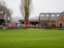 Koeien snel uit stal gehaald na grote brand in schuur Klarenbeek