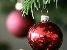Vroege kerstbomendief rekent buiten camera