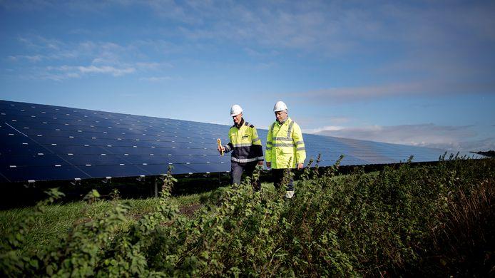 Prinslandsezon zal, afhankelijk van het ontwerp, ongeveer 118.000 panelen groot zijn.