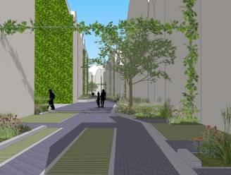 Stad Antwerpen maakt één miljoen euro extra vrij voor onthardingsprojecten