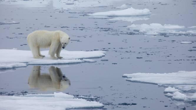 """Lagere uitstoot broeikasgassen door coronapandemie heeft """"onbeduidend effect"""": planeet stevent af op opwarming van 3°C"""