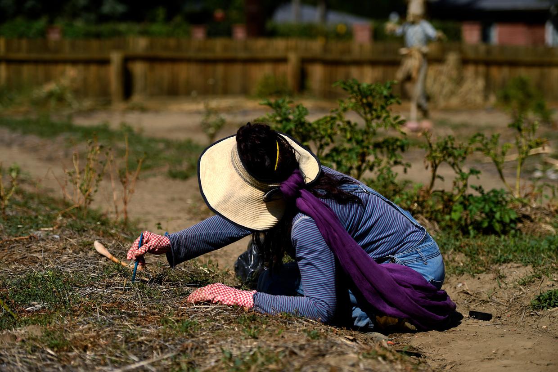 Een vrouw bewerkt haar tuin met onkruidverdelger in Denver, Colorado.