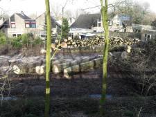 Hilvarenbeek ontsnapt aan nieuw drama bij rooiwerkzaamheden