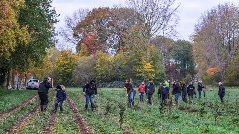 63 vrijwilligers hebben zaterdag 2.700 bomen aangeplant.