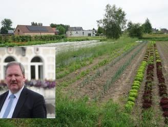 """Beveren heeft resultaten bodem- en grondwaterstalen: """"Geen aanleiding om maatregelen aan te passen"""""""