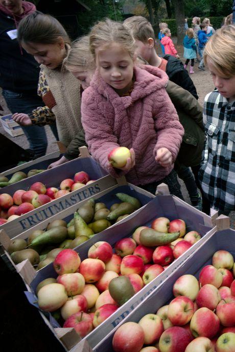 Lokale boeren delen fruit uit op Amerongse school: 'Wat van ver komt, is niet altijd beter'