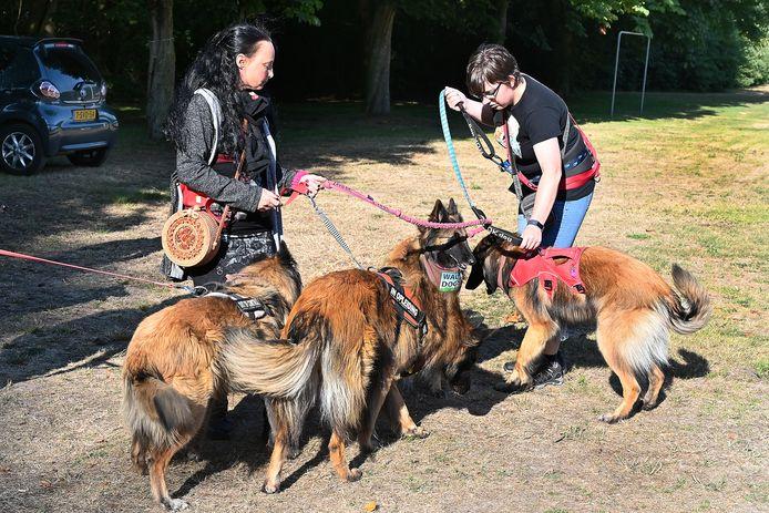 The Walk of the Dogs in Escharen.