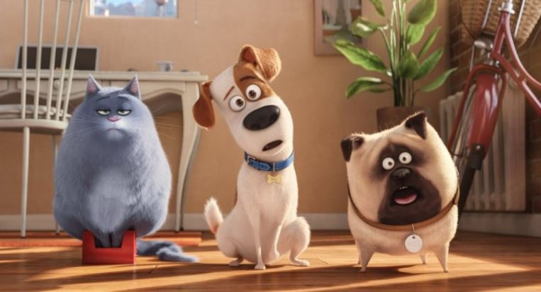 The Secret Life of Pets Beeld Netflix