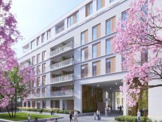 Zuidpand verdwijnt, Mandelhof verschijnt: tegen 2024 96 appartementen rond binnentuin langs Zuidstraat