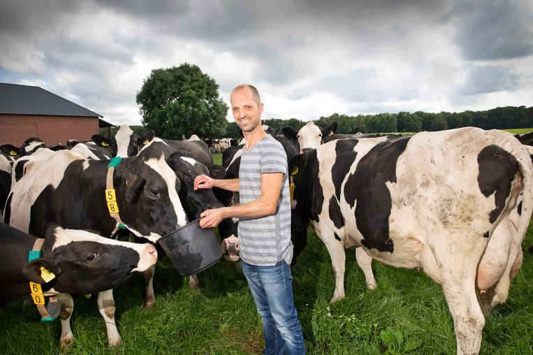 Melkveehouder Johan Keijsers (39) tussen zijn Holstein-koeien. Beeld Ton Toemen