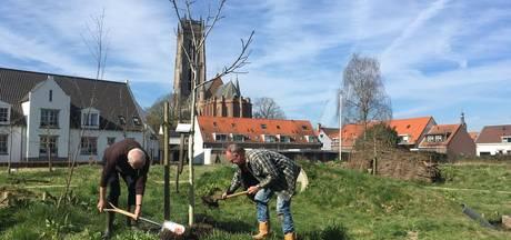 Torentuin maakt ruimte voor bouw Zaltbommel