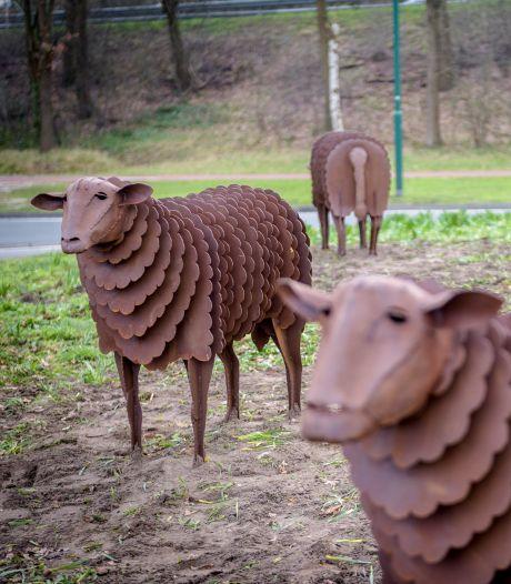 Geldropse schapen van staal strijden om prijs voor mooiste kunstwerk