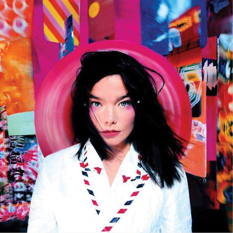 Björk Beeld