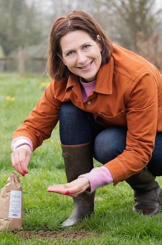 Je gazon weer in topvorm: onze tuinexperte legt uit hoe je het groot lenteonderhoud aanpakt