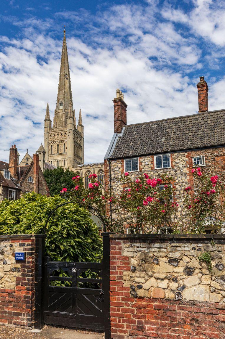 Tuinwijk The Close met op de achtergrond de kathedraal van Norwich.  Beeld RV