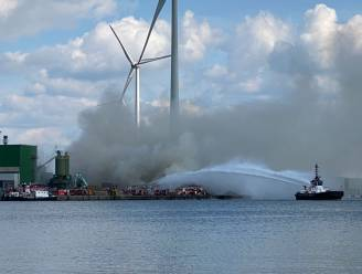 Indrukwekkende beelden tonen grote rookpluim van brandende houtstapel in Antwerpse haven: nog uren last van geurhinder