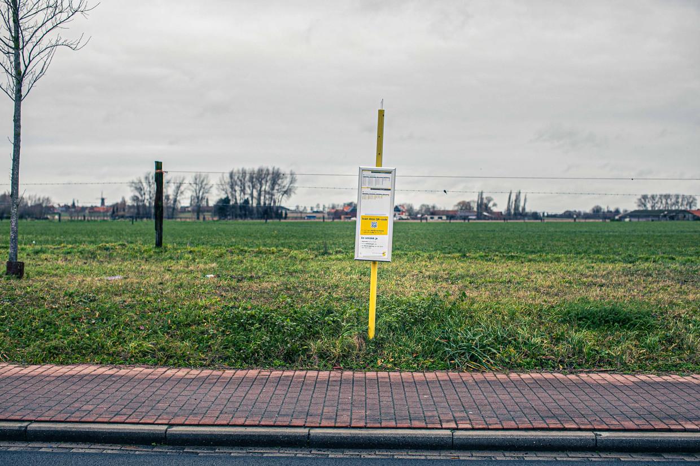 Bushalte in de regio Kortrijk. Beeld Bas Bogaerts