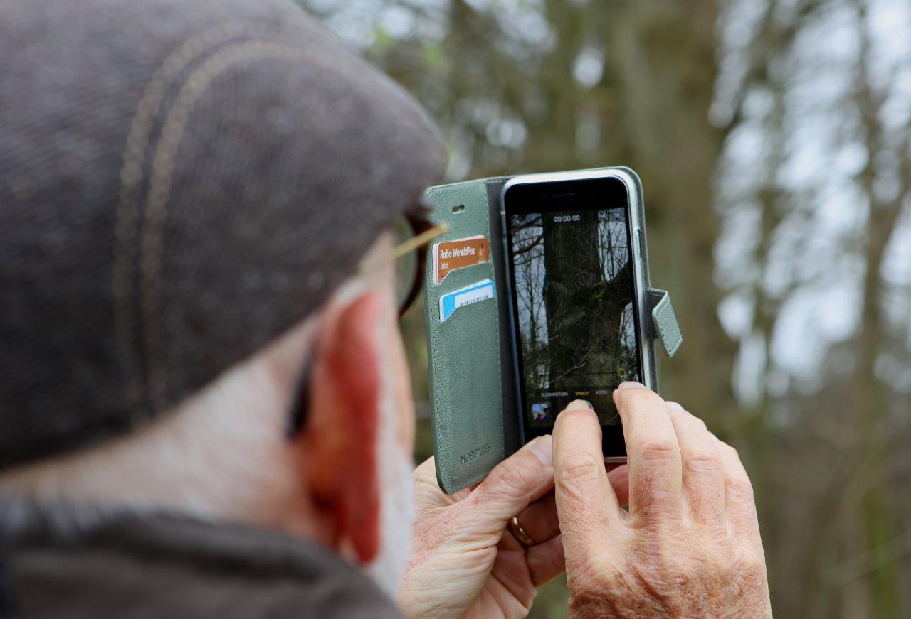 Een omstander maakt een foto van de wasbeer.