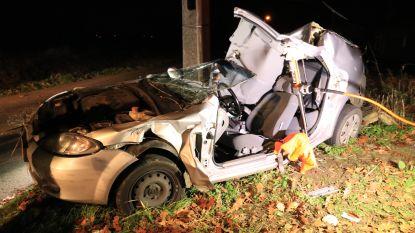 Chauffeur zwaargewond na klap tegen elektriciteitspaal