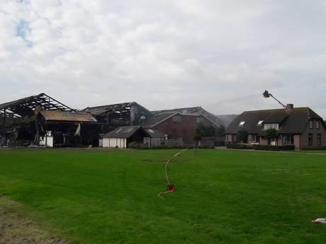Brand in Erichem verspreidde zich razendsnel door alle stallen