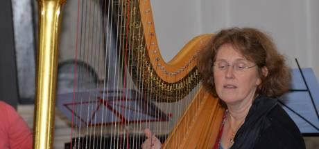 Domper voor muziekscholen: Nog steeds niet kunnen helpen bij het stemmen van die valse viool