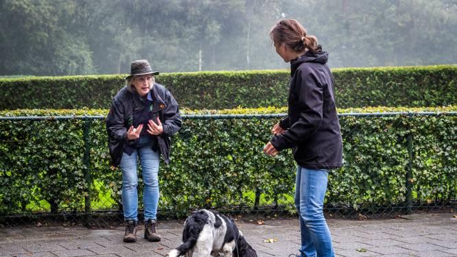 Hondenschool Son en Breugel bestaat 25 jaar: 'Een hond belonen is zo belangrijk'