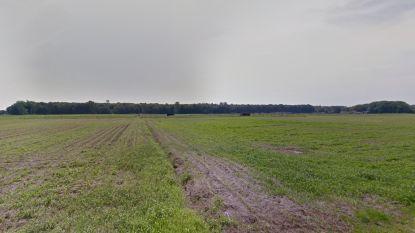 """Brugge gaat 30 hectare grond aankopen in Male: """"Willen er een nieuw stadsbos van maken"""""""