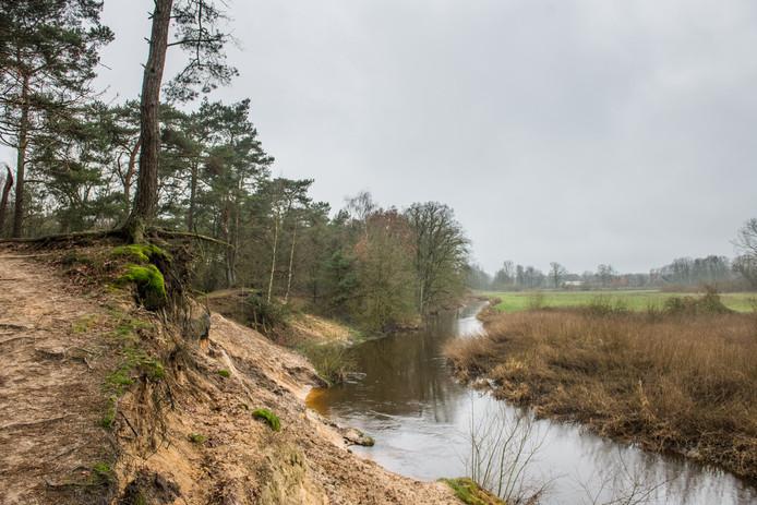 De gemeente Losser wil onder strikte voorwaarden meewerken aan de realisatie van een natuurbegraafplaats in het Lutterzand.