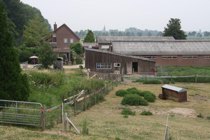 Bert's Animal Verhuur vanaf de dijk bij Appeltern.