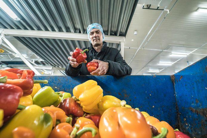 Rainbow Kleinpak - Edwin Kester over verspilling van groente met een plekje