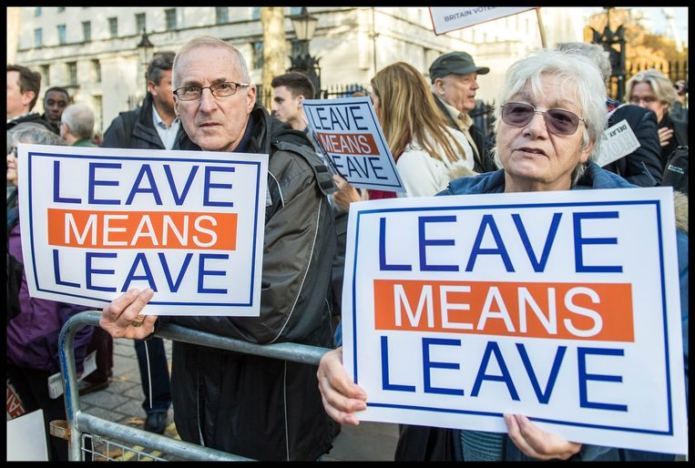 Pro-brexit-betogers. Beeld Photo News