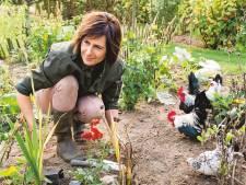 Droog, droger, droogst: zo overleeft je tuin periode zonder regen