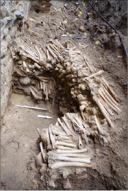 De muren werden opgebouwd uit dijbenen, scheenbenen en schedels.