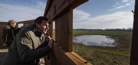 Gluren naar kiekendieven, reeën - en misschien zelfs- bevers vanuit vier nieuwe spotplekken in de Oostvaardersplassen