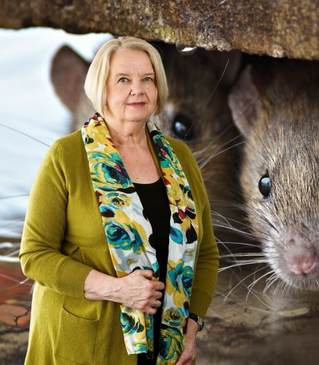 Columnist Lia over oprukkende ratten in Gouda: 'Het zijn valse knoeperds, die je uit de buurt van je baby wilt houden'