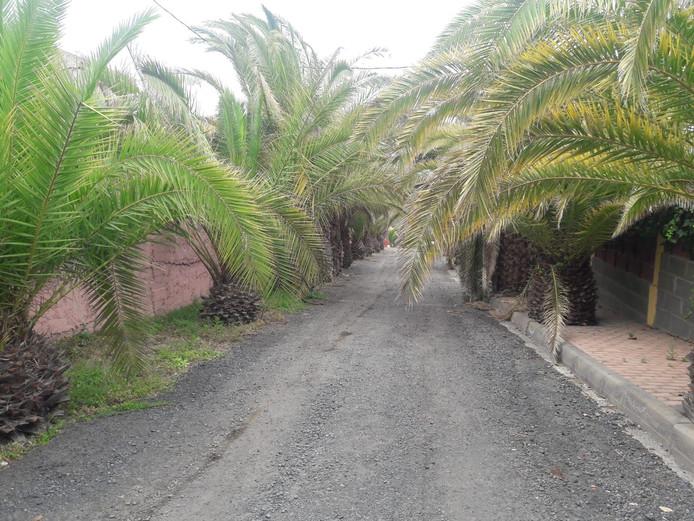 De weg richting de villa.