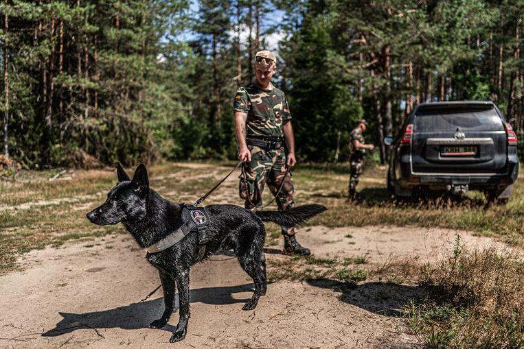 Grenswachter Lukas met Derrek: 'Vooral moslims zijn bang voor honden. Ze geloven dat ze in de hel komen als ze worden gebeten.' Beeld Joris van Gennip