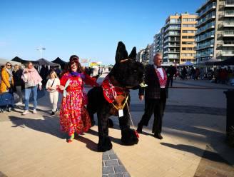 IN BEELD - Hond en baasje genieten van eerste kwispelfestival met zicht op zee