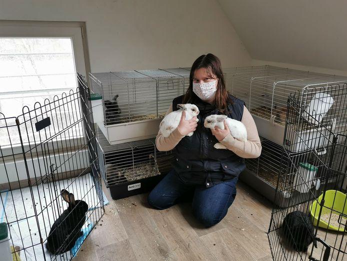 Eveline Bultynck in haar konijnenopvang Rambi in Maldegem.