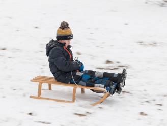 IN BEELD. Dartele hertjes, de eerste engel en sleeën dat het een lieve lust is: Vlaanderen geniet van de sneeuw!