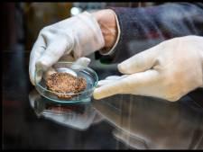 47 miljoen euro voor Delfts bedrijf om ontwikkeling en productie van kweekvlees uit te breiden