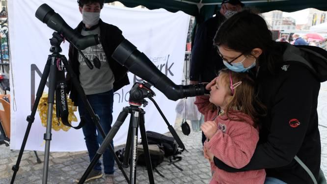 """Mechelse marktbezoekers spotten slechtvalken in Sint-Romboutstoren via telescoop: """"Leuke extra voor een dagje markt"""""""