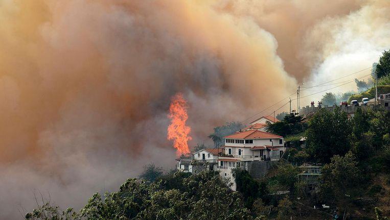 Bosbranden op Madeira. Beeld afp