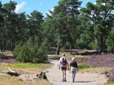 Toerisme Heuvelrug snakt naar draaien op volle toeren: 'Bezoekers dragen bij aan fijne leefomgeving'