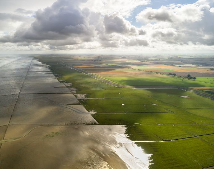 Friesland komt in september met de 'wadopera' Peter Grimes.