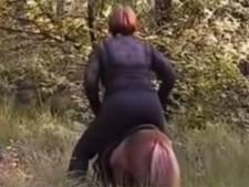 Opnieuw twee aanhoudingen na filmpje mishandeling pony